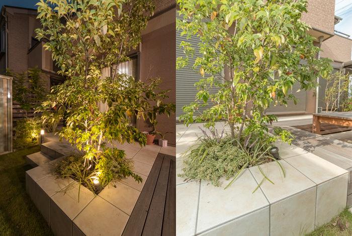 garden-reform-ishii014