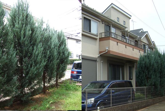 garden-reform-ishimoto009