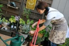 garden-reform-itoya008-サムネイル