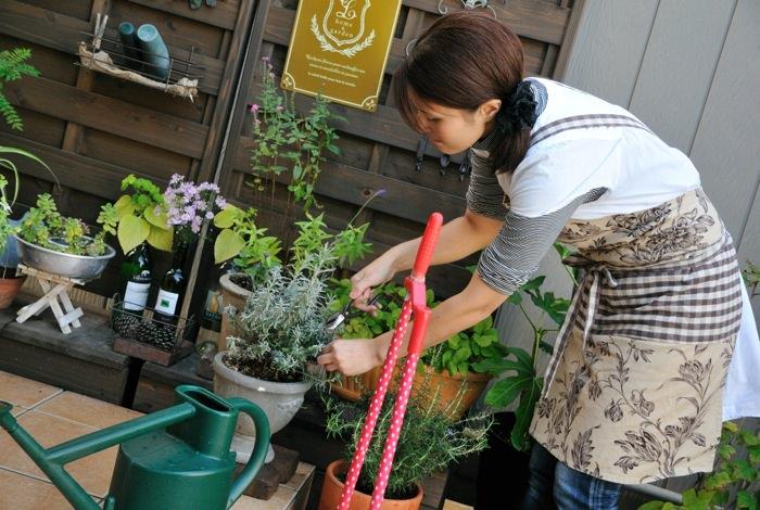 garden-reform-itoya008