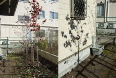 garden-reform-kato011-サムネイル