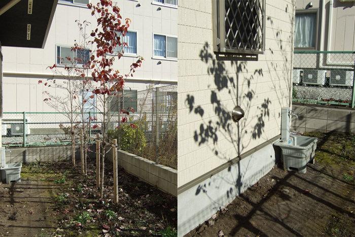 garden-reform-kato011