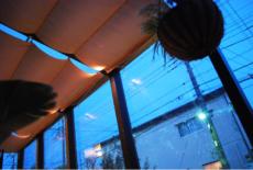 《ガーデンリフォーム工事写真集》-白石様邸-15-サムネイル