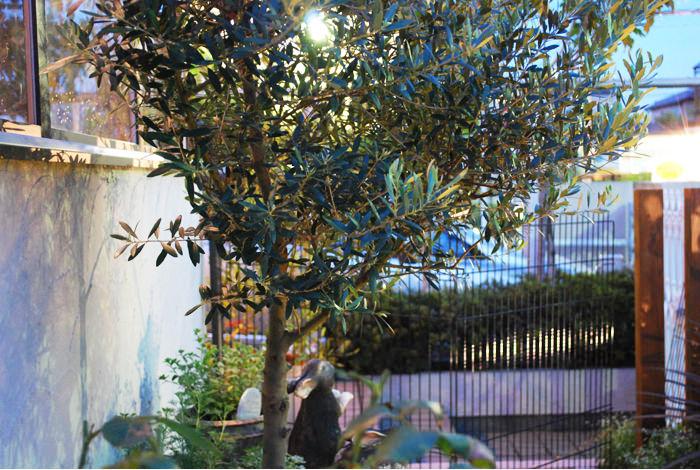 《ガーデンリフォーム工事写真集》-白石様邸-17