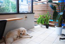 《ガーデンリフォーム工事写真集》-白石様邸-22-サムネイル