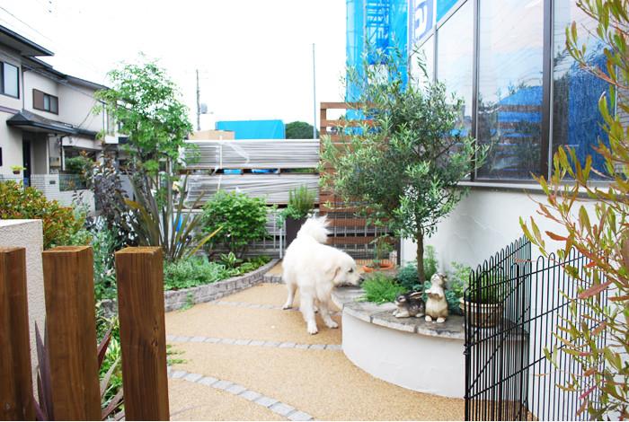 《ガーデンリフォーム工事写真集》-白石様邸-23