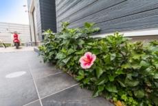 南国の花をアプローチに-サムネイル