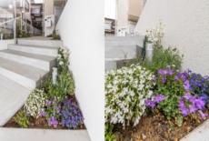 アプローチの途中に花壇を造作-サムネイル